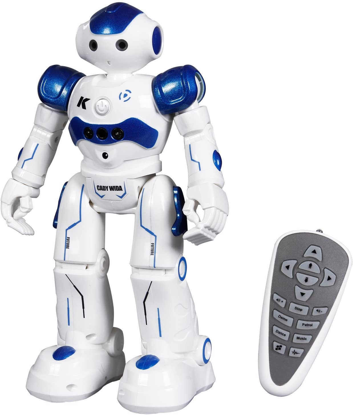 Toch Remote Control Programmable Robot